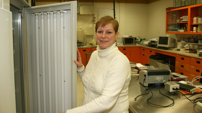 Liette Vasseur works in her lab at Brock.