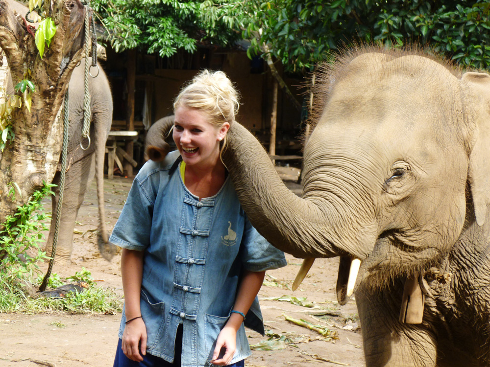 """This picture is from a elephant refugee camp in Chaing Mai, Thailand where this baby elephant was giving out free kisses!"""
