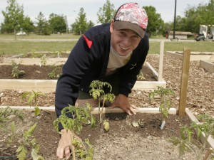 Community Gardens The Brock News