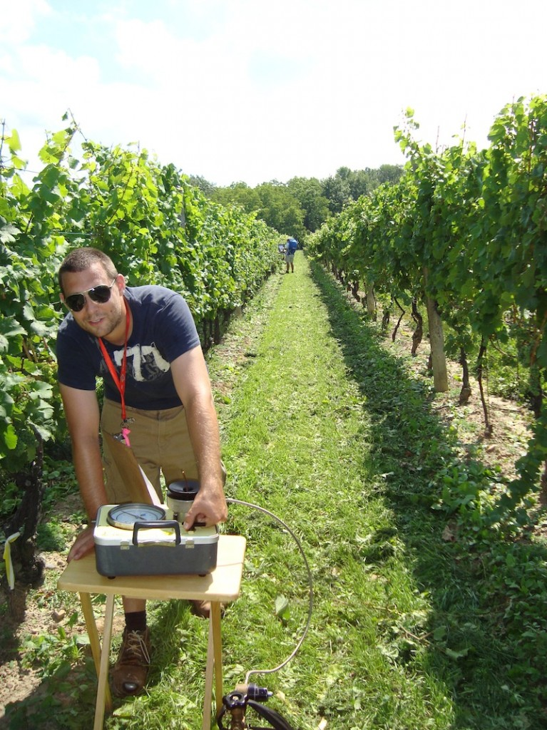Tieg Lapointe a sustainability master's student, measures plant water status in a vineyard.