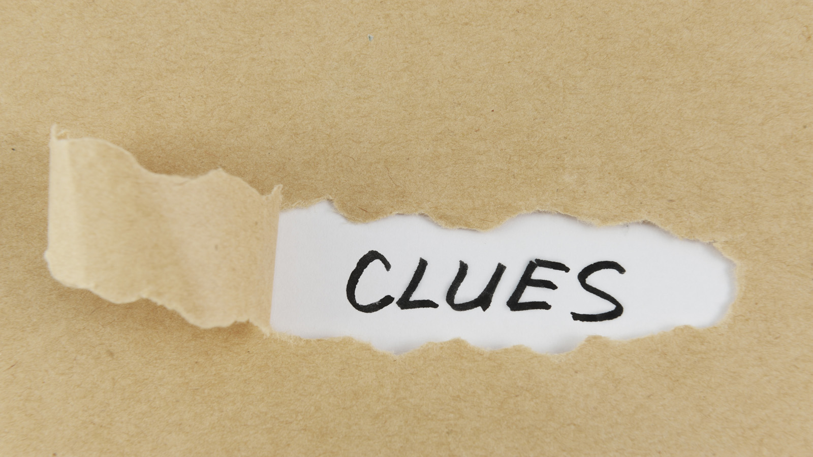 "Every weekday during February, Research Matters will be releasing a video ""clue"" through its Virtual Scavenger Hunt website that in turn will take amateur sleuths to the website of one of Ontario's 21 universities."
