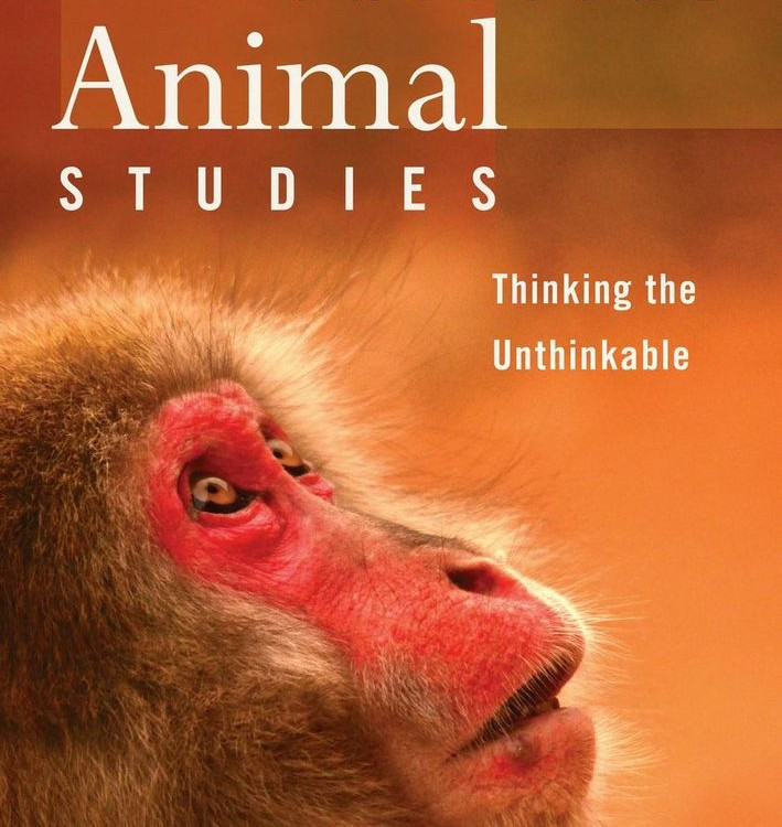 the human animals essay An argument in favor of the rights of non-human animals essay accordingly, following this principle, the exclusion of non-human animals from a type of rights.