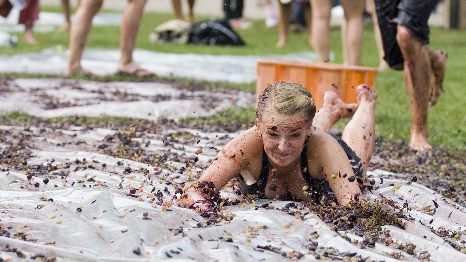 Grape Stomp Among Great Canadian Campus Traditions The Brock News - Canadian traditions