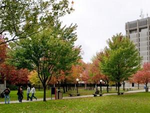 Brock tower in fall
