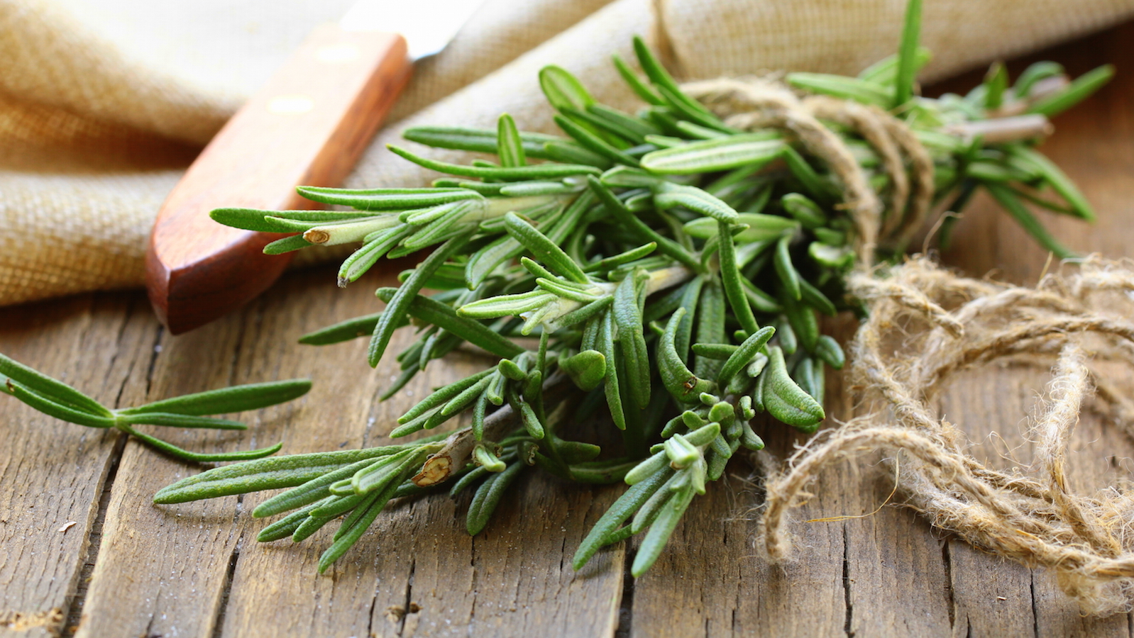 How much would it cost for Rosemary?
