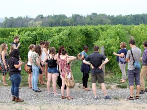 Students in the Oenology and Viticulture (OEVI) degree program and Grape and Wine Technology certificate program (OEVC) headed out to the field for vineyard and winery tours with two of the program's local alumni.