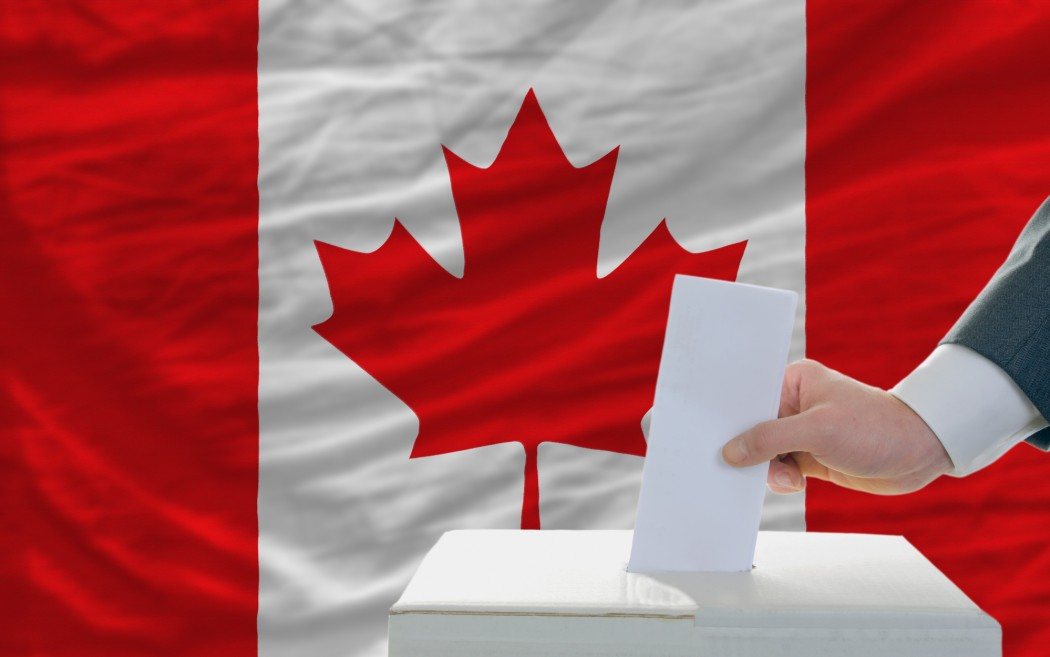 canadian politics Canadian politics courses canadian politics and government courses involve the systemic study of past and current political issues, government institutions and actors.