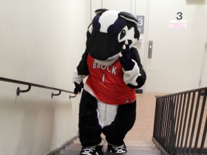 Boomer the Brock Badger in the stairway in the James A. Gibson Library to promote the #LibraryStairsChallenge.