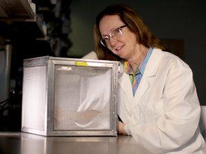 Brock University medical entomologist and researcher Fiona Hunter.