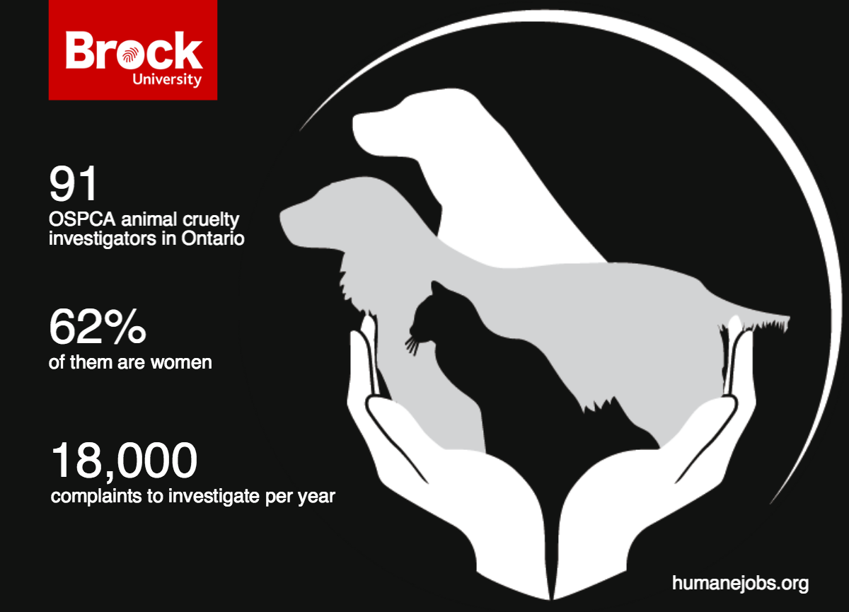 OSPCA-InfoGraphic. Says 91 OPSCA animal investigators in Ontario, 62% of them are women and 18,000 complaints investigated per year