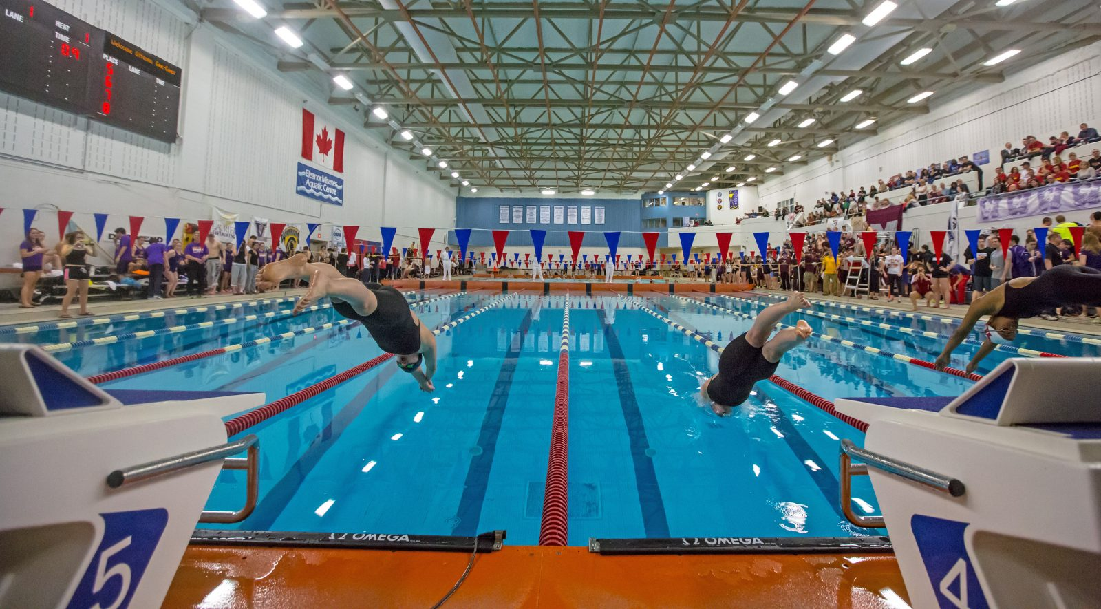Varsity swimmers from china to compete at brock the brock news for Durham university swimming pool