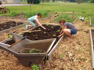 Brock community garden