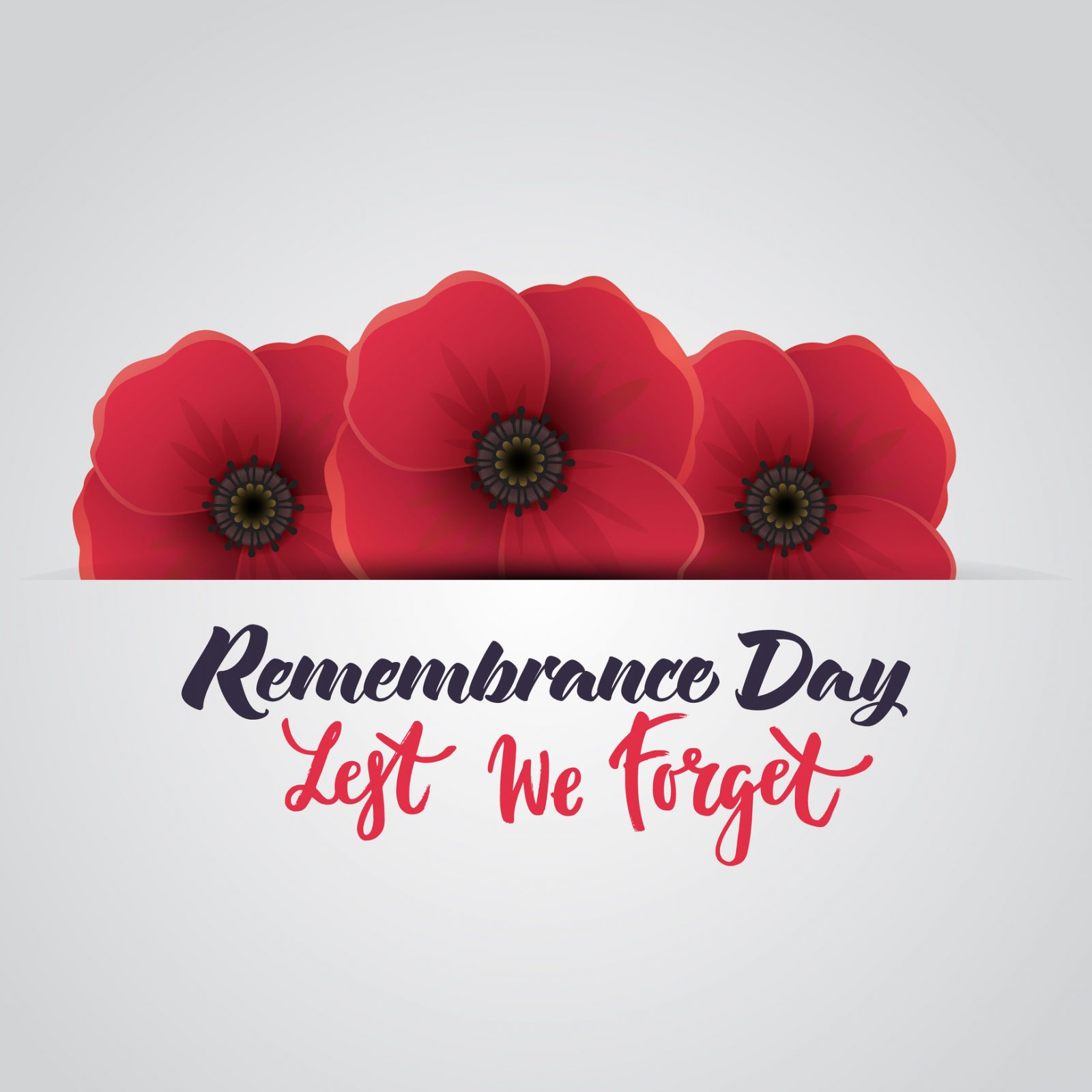 Remembrance Day to be marked at ceremonies across Niagara – The Brock News