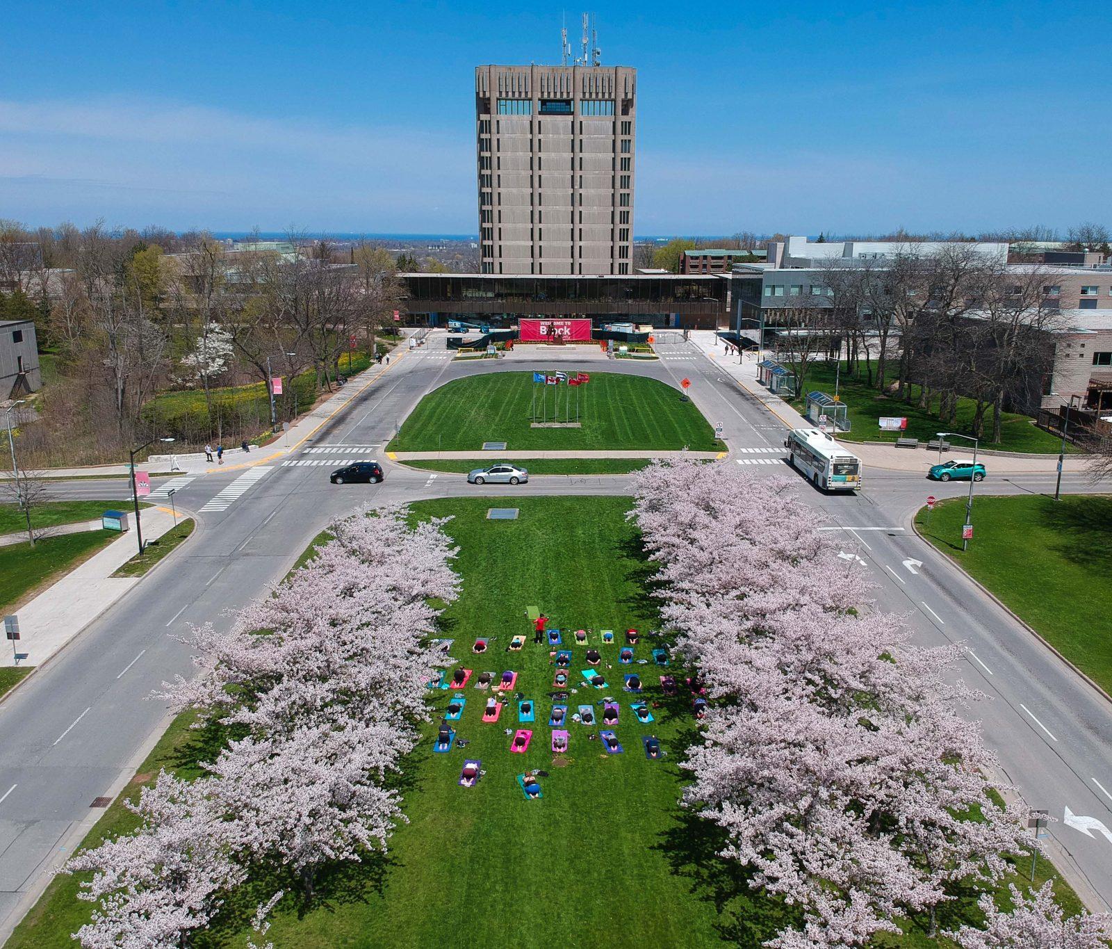 Cherry blossom yoga held at Brock
